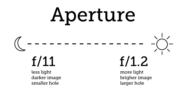 Perfect Exposure Every Time: A Guide to Metering in the