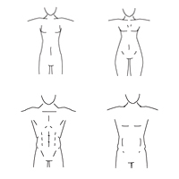 How to Draw Different Body Types for Males and Females