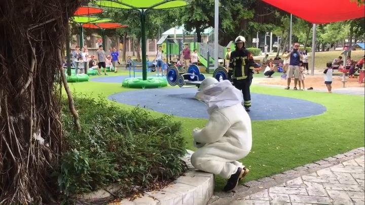 影/男童公園遭蜂螫 消防局接視訊報案緊急救援 | 時事 | 聯合影音