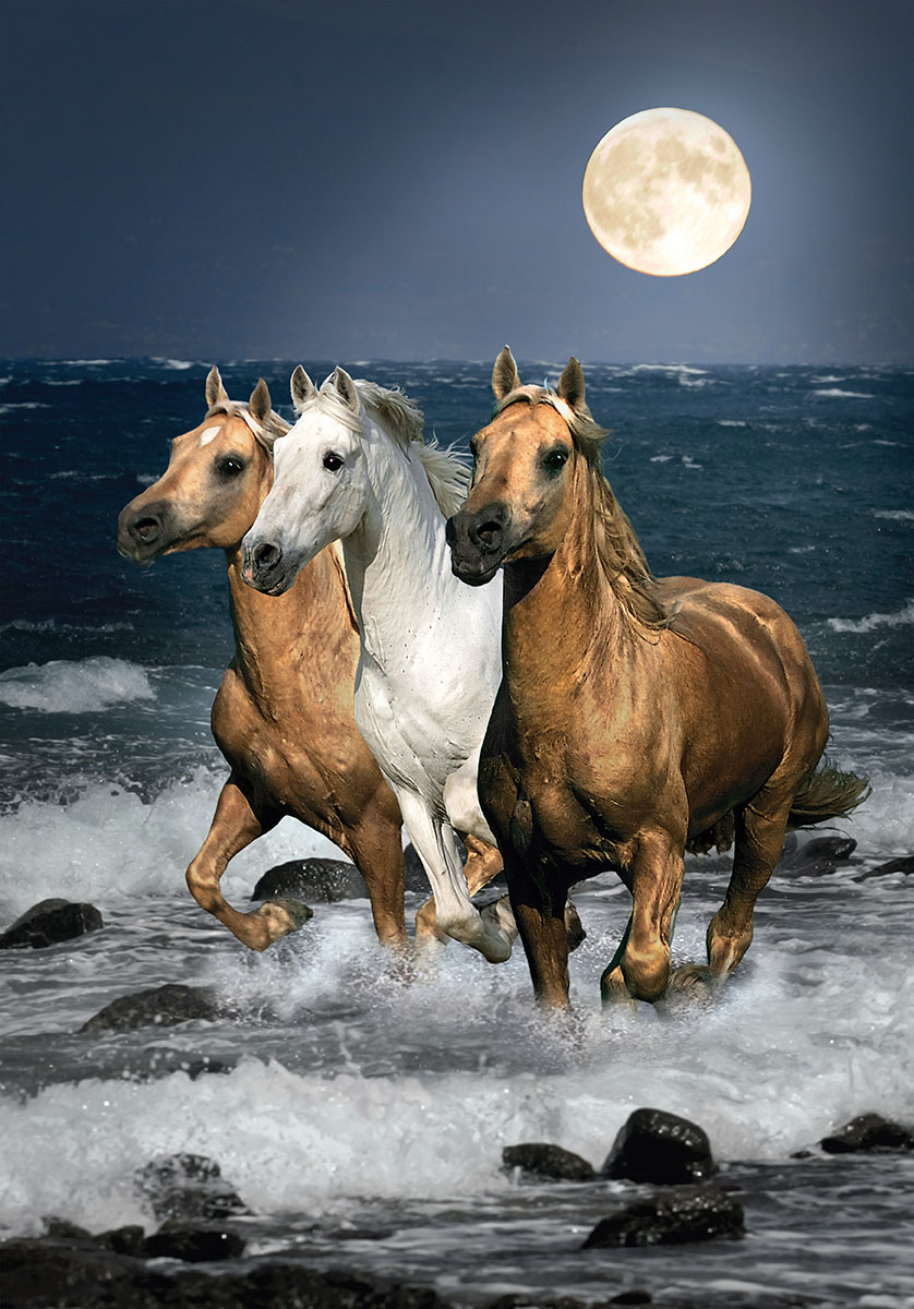 Running Horses 1500 Pieces Clementoni Puzzle Warehouse