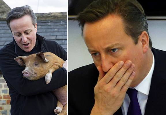 UNILADs The Internet Reacts To David Cameron Putting His Knob In Dead Pigs Mouth image