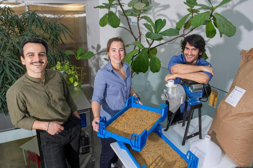 Co-founders of Lowimpact Food, Haidar Hussain, Camille Wolf and Simon Meister want to develop an alternative protein source.