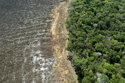 Setting: the movement to guard 80% of the Amazon was accepted