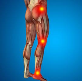 Mouvements d'activation musculaire
