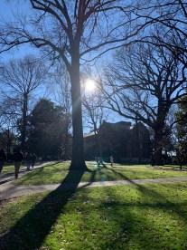 Taken around campus, from @tyler.o.horton