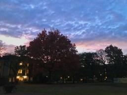 Sunset from @gracevchen