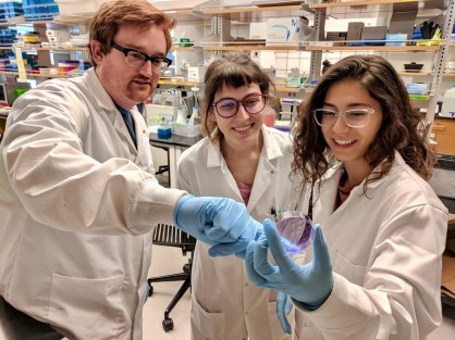 Ivanova and some of her lab partners, pre-COVID.