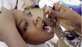 Nigeria, Cameroon declared polio-free