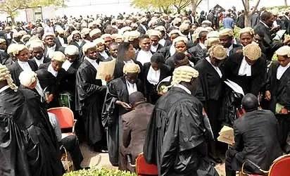 Lawyers SARS