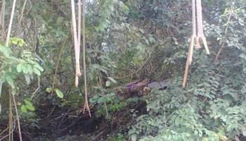 Image result for Itsekiri burial
