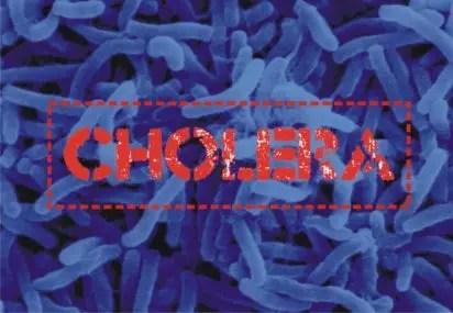 Cholera kills 37 in Jigawa, Enugu