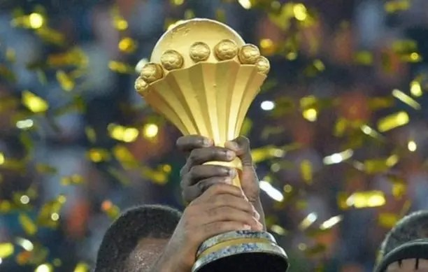 AFCON 2019: Road trip hits a snag for two African football fans