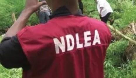 I smuggled cocaine into Nigeria because I needed money for my wedding ― Suspect