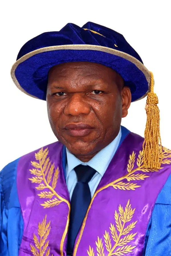 Prof. Eyitope Ogunbodede, Vice Chancellor, OAU. Photo: Vanguard