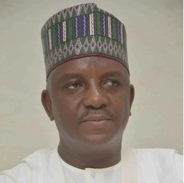 Sale Mamman, Power Minister