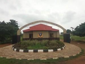 Edo Poly