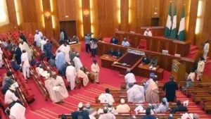 Corruption will reduce if proper auditing systems are in place ― Senate