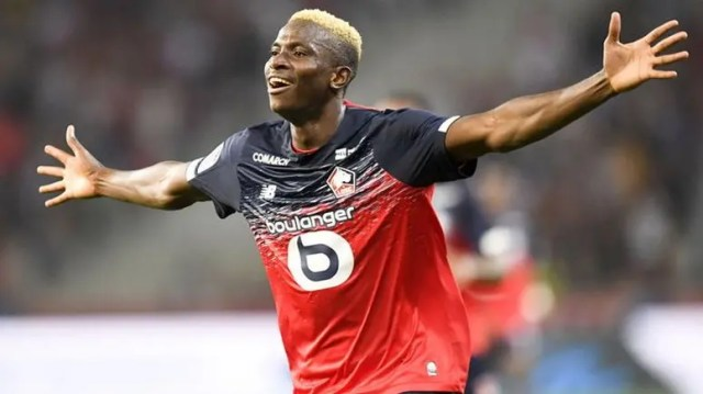 How Nigerian forward Osimhen adapted to life in Lille