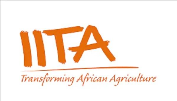 IITA: Caravan researcher says findings will help stakeholders improve food security in Nigeria