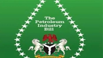 Senate's PIB restricts petroleum products import to refinery owners