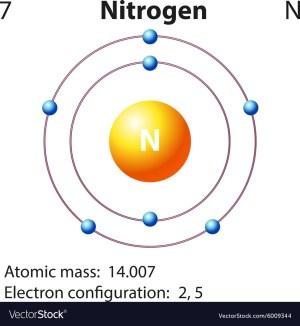 Diagram representation of the element nitrogen Vector Image