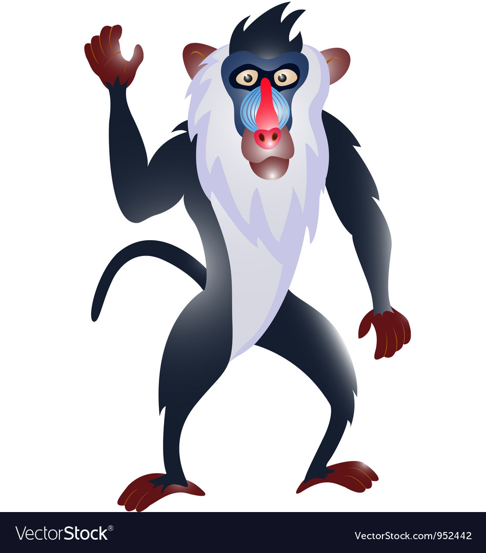 hight resolution of cute cartoon baboon baboon cartoon vectorcartoon baboon
