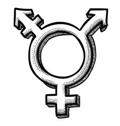 Transgender Vector Images (over 620)