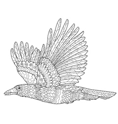 Crow or raven bird coloring page Royalty Free Vector Image