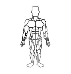 Human, Muscle & Anatomy Vector Images (over 1,900)
