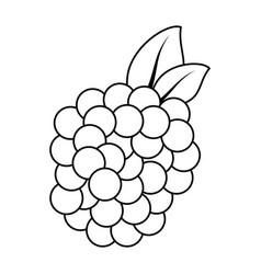 Blackberry icon outline style Royalty Free Vector Image