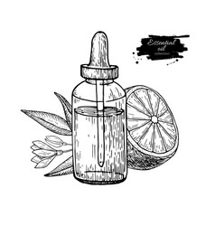 Citrus Essential Oil Aromatherapy Label Royalty Free Vector