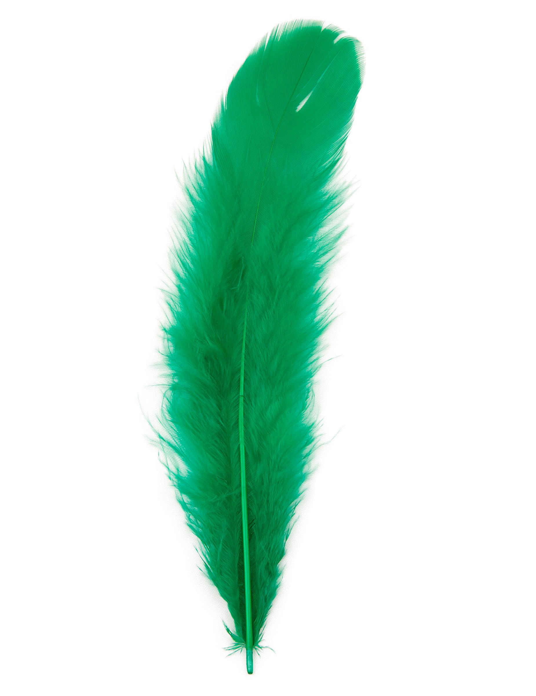 100 Plumas Verdes Decoraciny Disfraces Originales