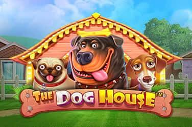 The dog house