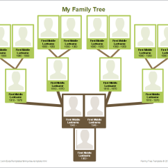 Blank Tree Diagram Graphic Organizer Bms Wiring E Bike Free Family Template Printable Chart With Photos