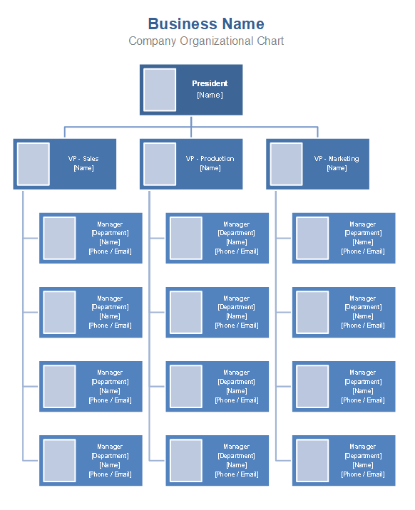 Download Template Struktur Organisasi Word : download, template, struktur, organisasi, Organizational, Chart, Template, Company, Organization