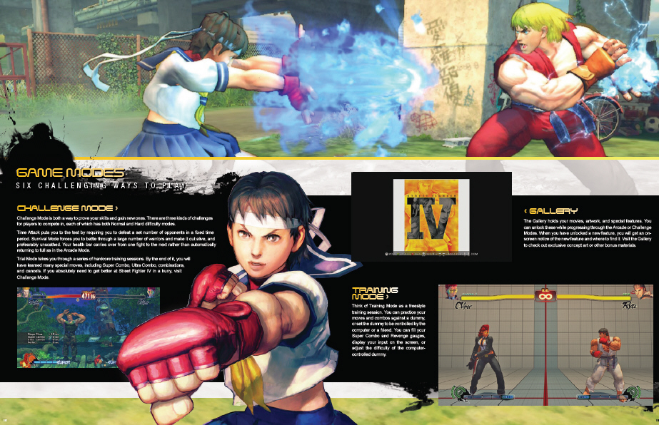Download The Street Fighter 4 Training Manual