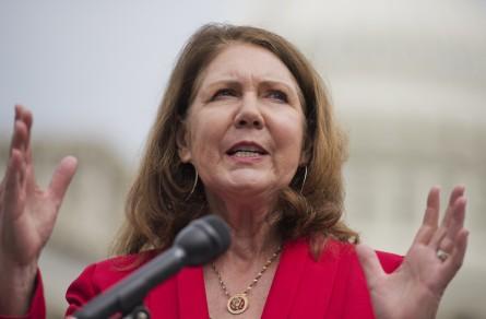 The Survivor: How Democrat Ann Kirkpatrick Held On