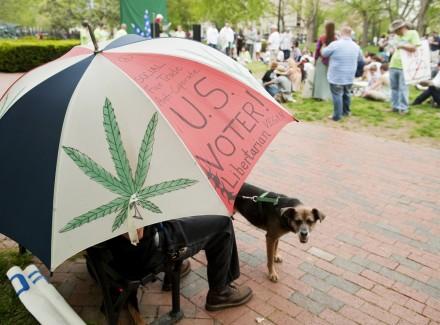 420 Rally 03 042011 440x325 Negotiators Strike Deal to Target Tax and Sale of Marijuana in D.C.