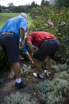 Reps. Joe Baca, Xavier Becerra and Zach Wamp look for a lost ball. (CQ Roll Call File Photo)