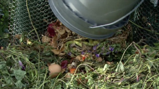 Make Garden Sustainability a Goal
