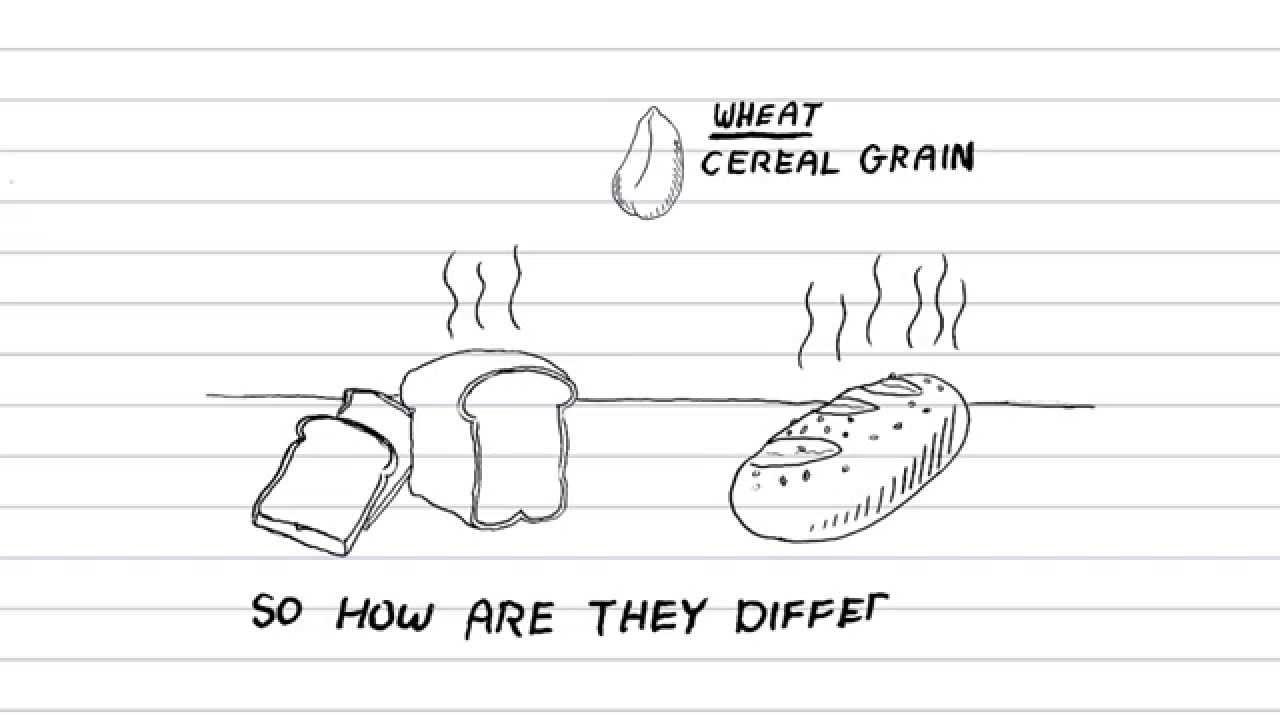 【生活英文】全麥麵包真的有比較健康嗎?跟一般麵包到底差在哪? (White Bread Vs Whole Wheat (Grain): Whats healthier ...