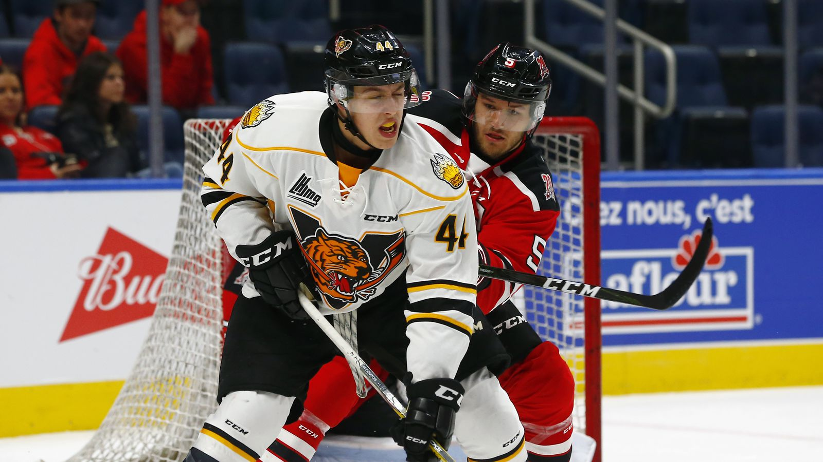 Scouting The 2017 Draft Maxime Comtois Could Be A Guy