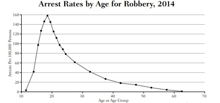 A chart showing the age-crime curve.