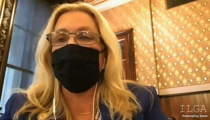 State Senator Sue Rezin, R-Morris, at Friday's hearing.