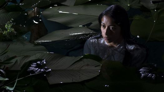 A woman wades in the water surrounded by leaves