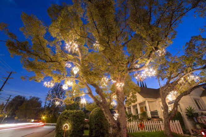The Chandelier Tree Shutterstock
