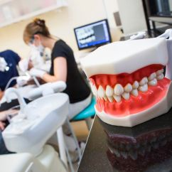 Amazon Dental Chair Covers Gaming And Desk How To Avoid Getting Ripped Off By The Dentist Vox