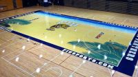 Minnesota Basketball: Check Out Williams Arenas New Court ...