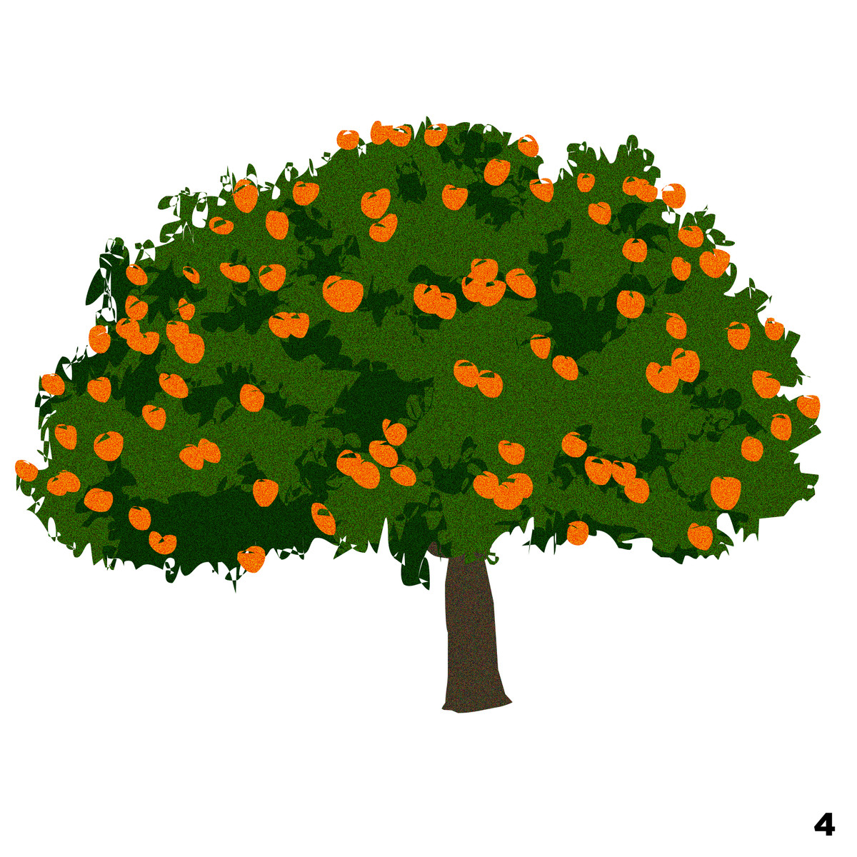 Los Angeles Trees And Flowers An Illustrated Guide