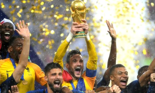 Image result for lloris world cup